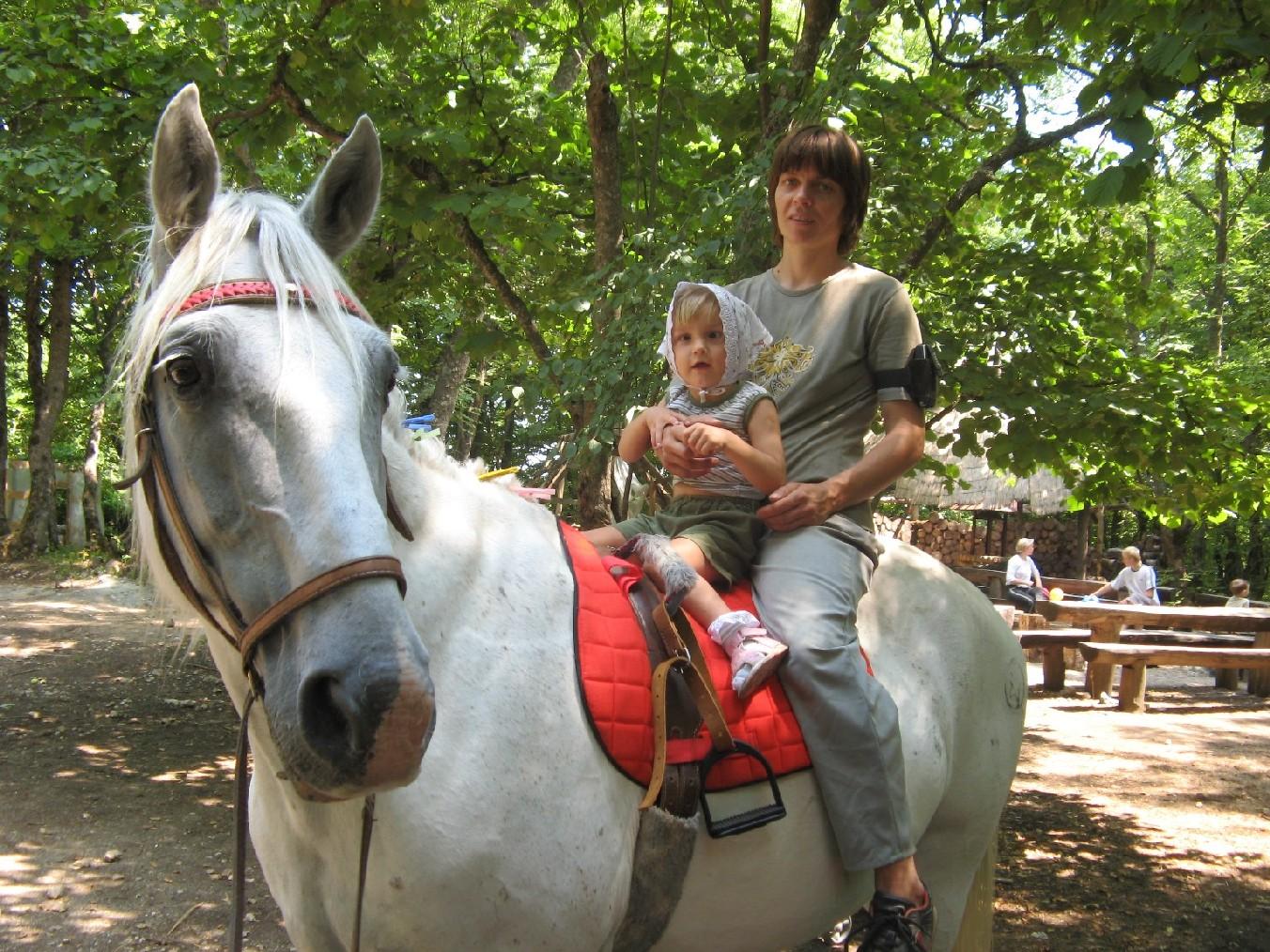 Дети инвалиды с животными фото